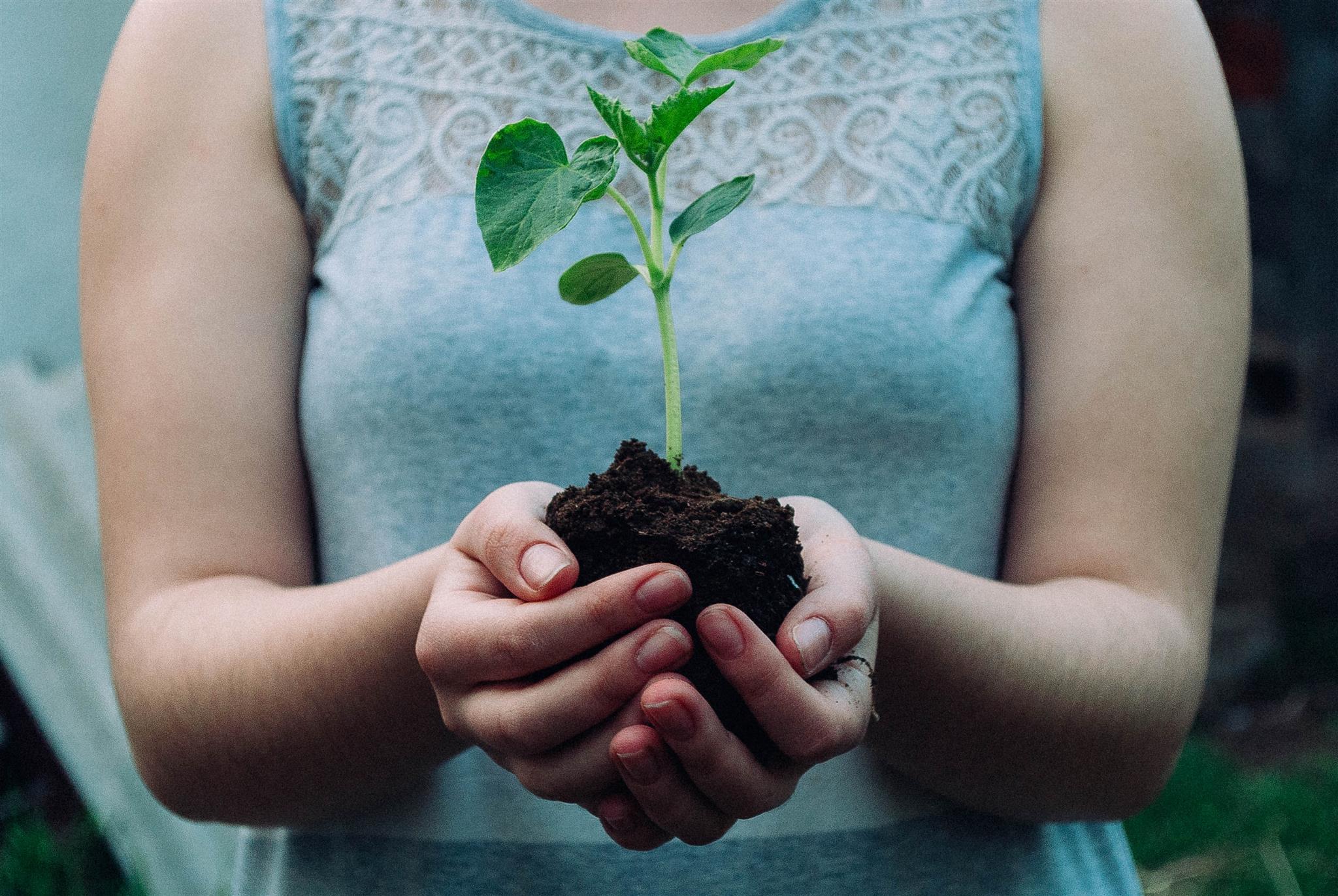 De ontdekkingstocht naar duurzaamheid