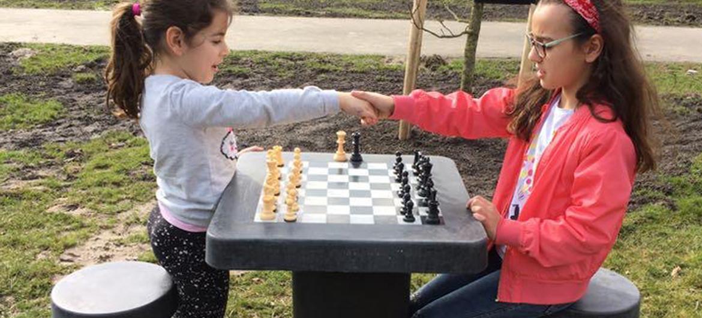 Openbare schaaktafels door heel Nederland