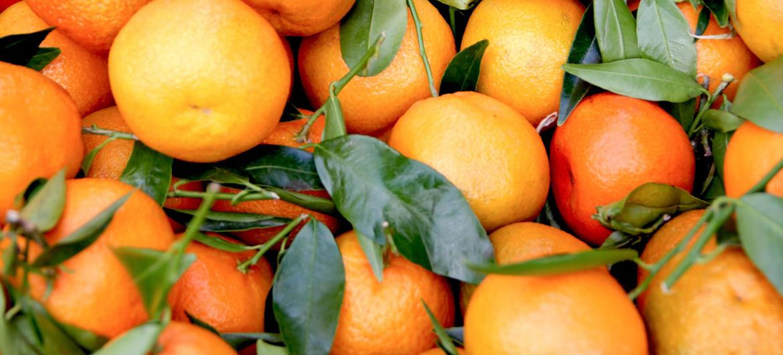 Sieraden van sinaasappelschillen