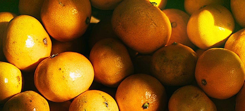 Spaanse sinaasappels met de trein