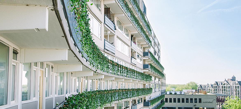 Lelijkste gebouw nu in volle bloei