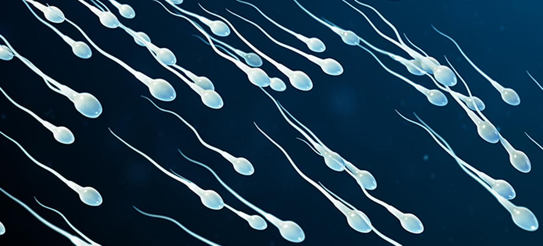 Vechten voor gratis anticonceptie