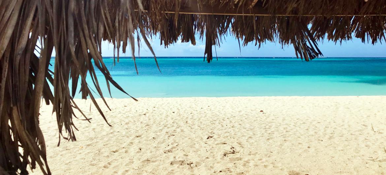 Win tickets voor Festival op Aruba