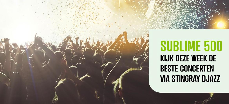 Elke avond een Sublime 500 concert op Stingray DJAZZ!