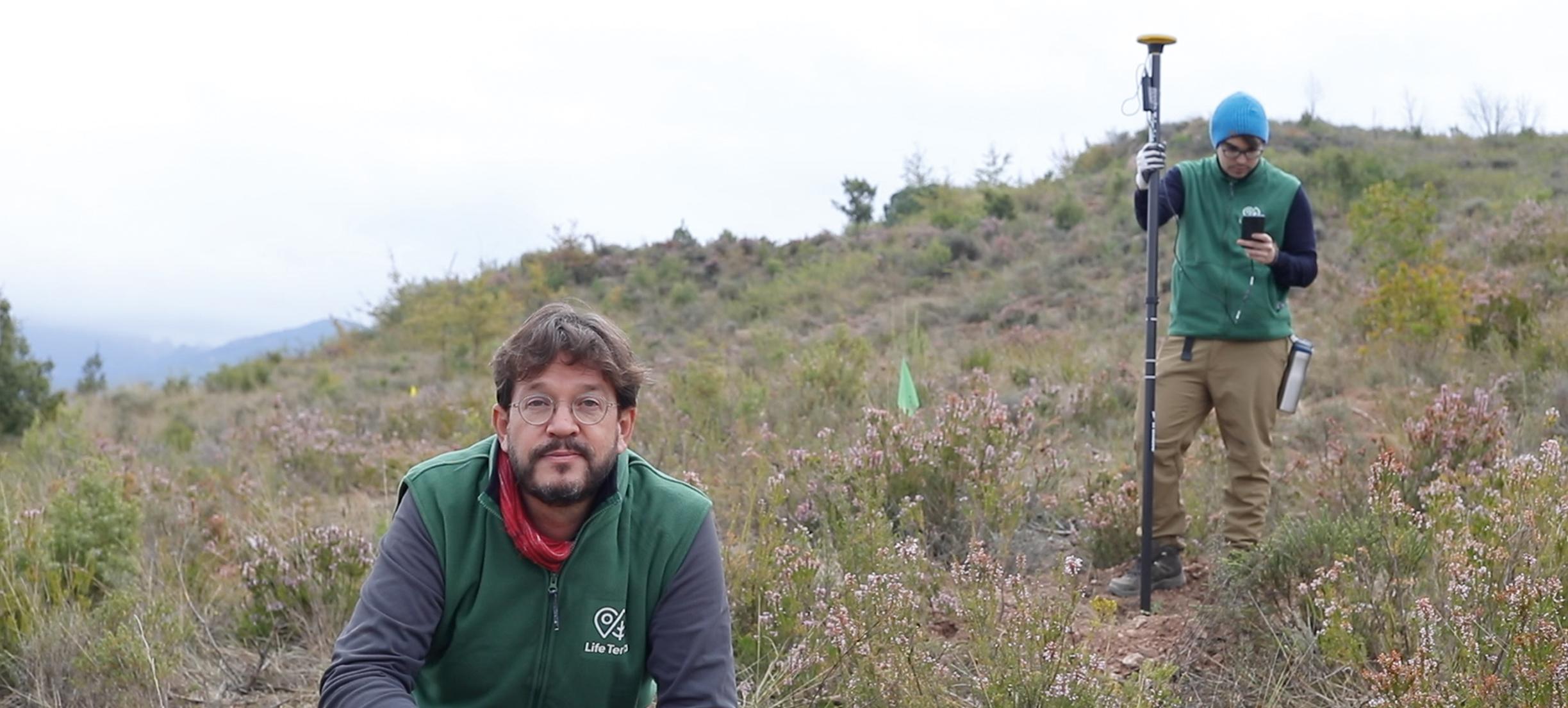 Deze organisatie plant 500 miljoen bomen in Europa