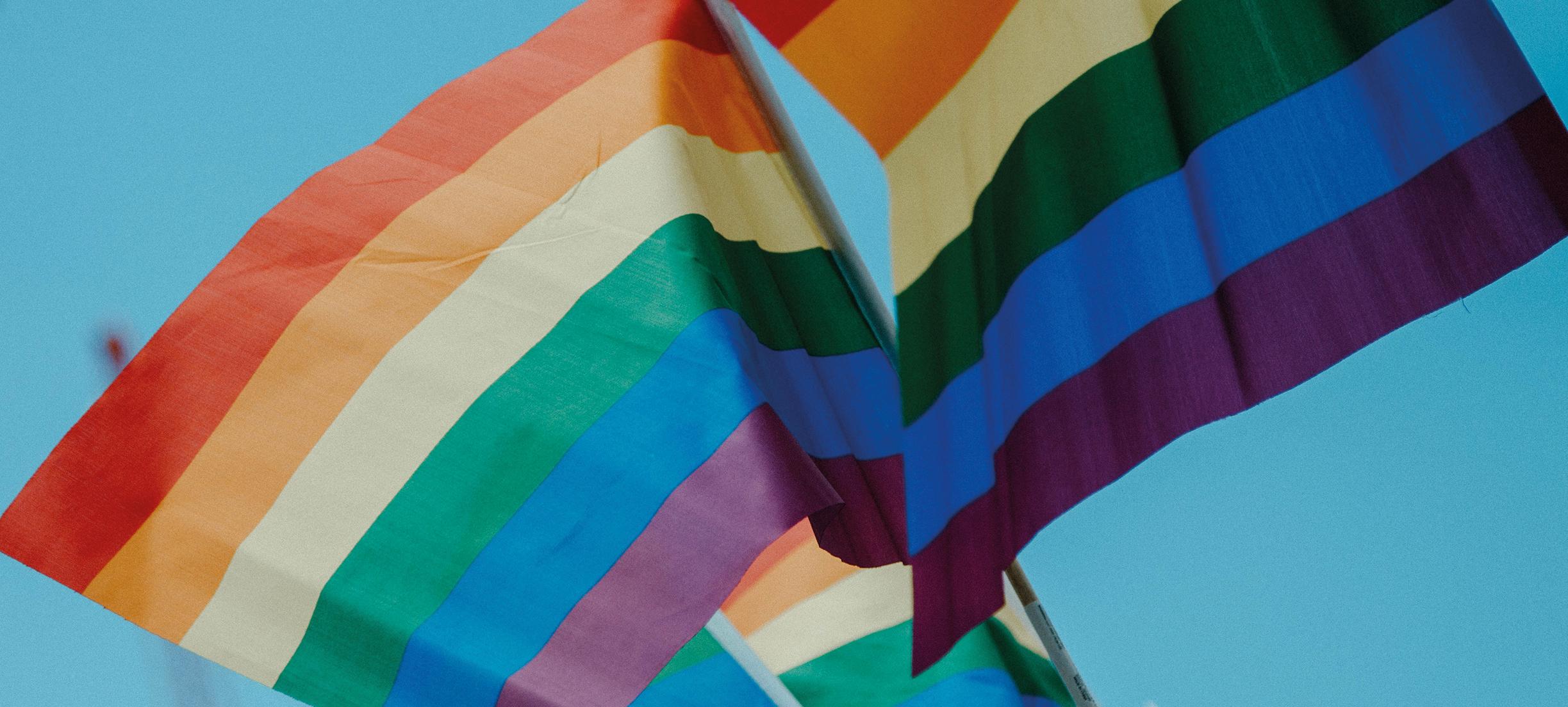 De dag in vooruitgang: Japanse rechter noemt verbod homohuwelijk ongrondwettelijk