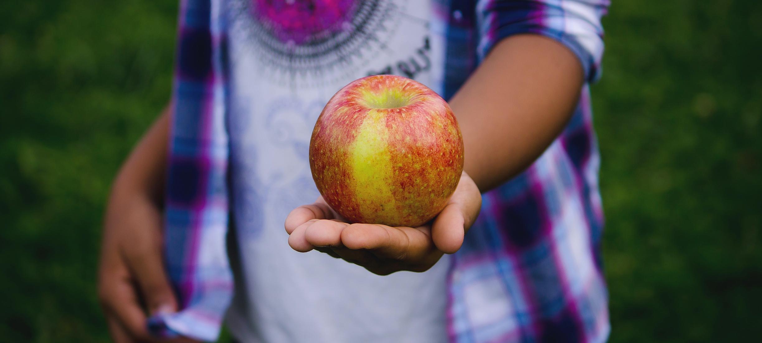 Adviesraad pleit voor suikertaks en minder btw op groente en fruit